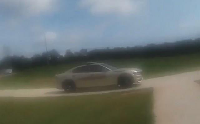 Автомобиль припаркован у обочины, а в нем козел