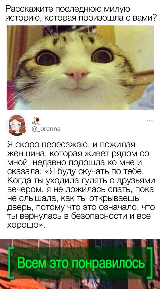 Милая история