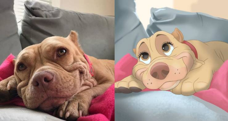 Собака из мультфильма