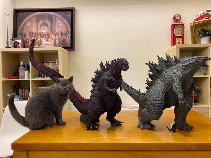 Кот и динозавры