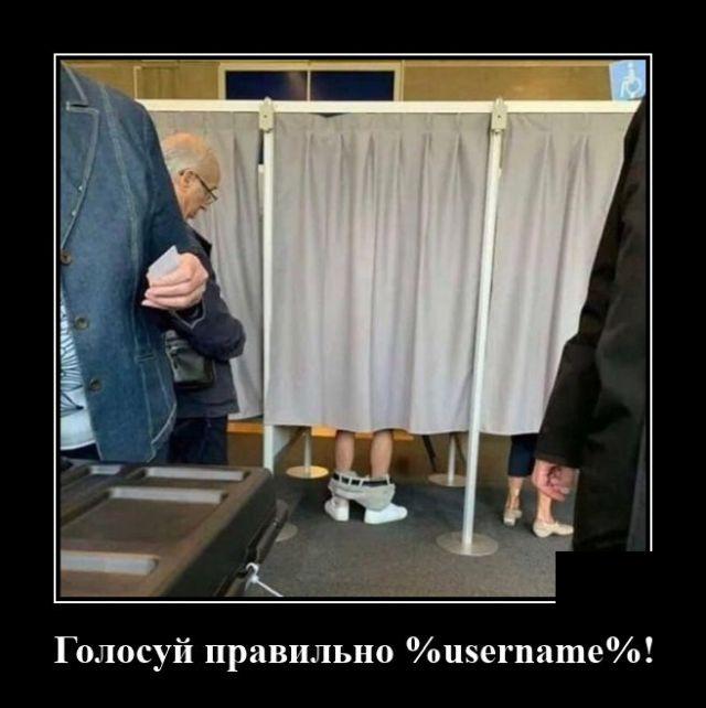 Демотиватор про голосование