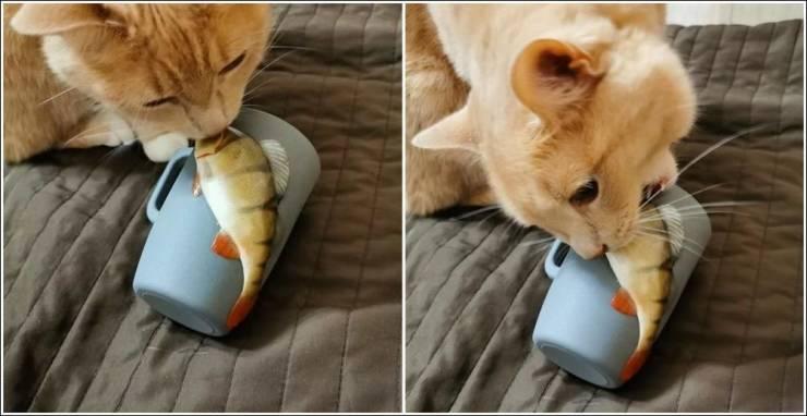 Кот и рыба на чашке