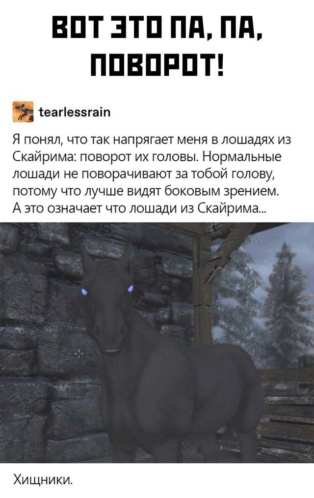 Лошади из Скайрима