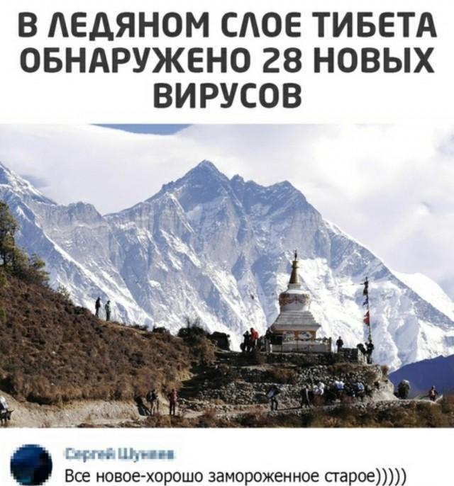 Новые вирусы в ледяном слое Тибета