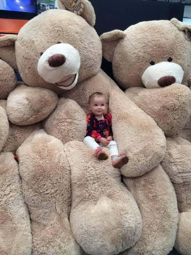 Малыш и огромные медведи