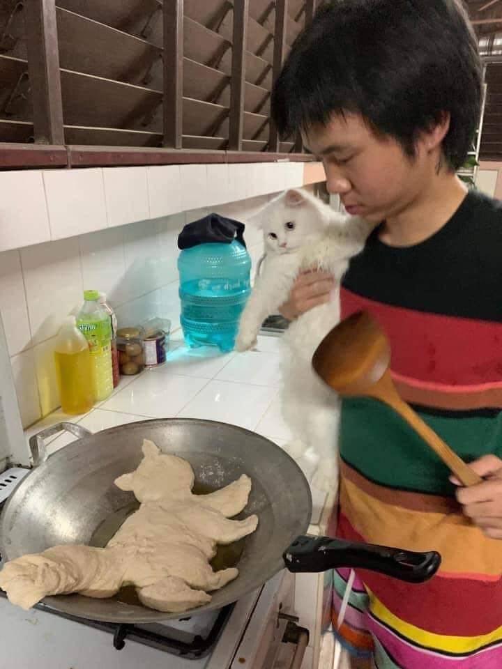 Приготовление кота