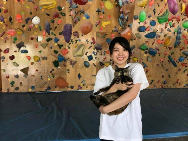 Кошка на руках девушки