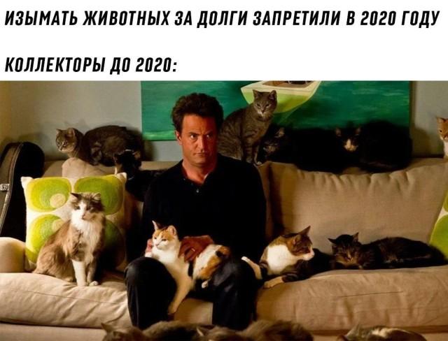 Подборка картинок. Вечерний выпуск (31 фото) - 25.09.2020