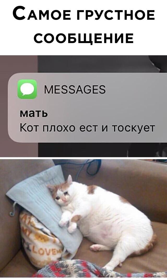Грустное сообщение от мамы