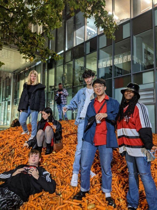 Студенты лежат в моркови