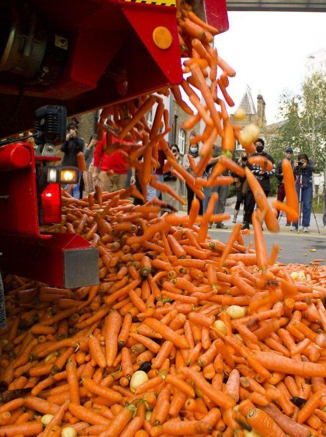 Высыпают морковь