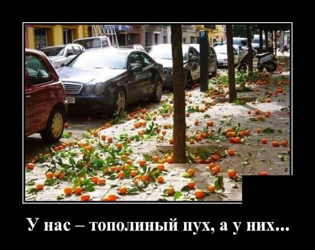 1601645833_demotivatory_01.jpg