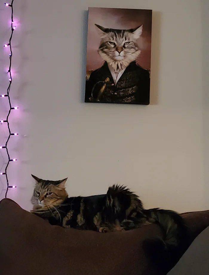 Кот на картине
