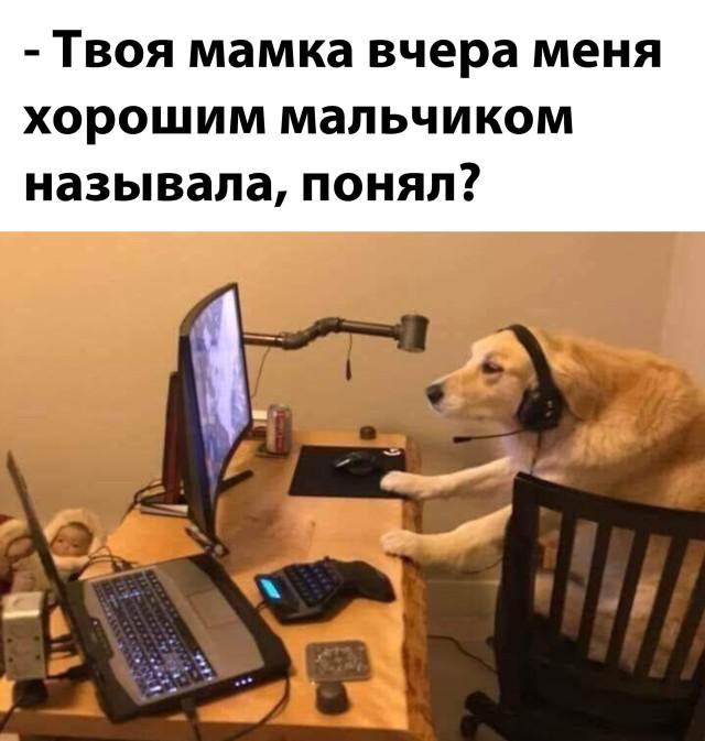 Хороший мальчик ха компьютером