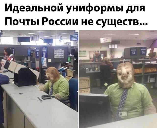 Ленивец на Почте России