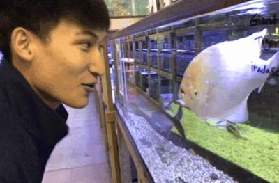 Парень дразнит рыбу
