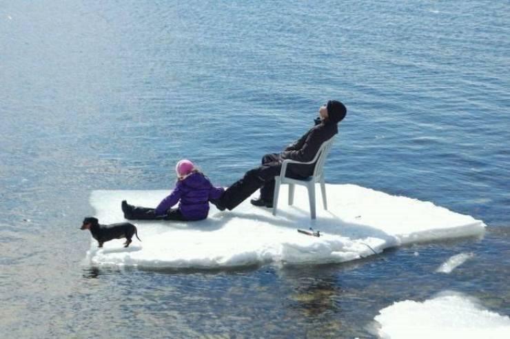 На льдине в водоеме