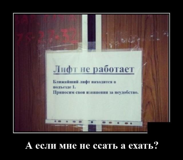 1602255044_demotivatory_13.jpg