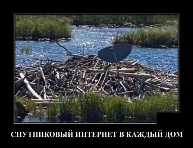 1603120414_demotivatory_18.jpg
