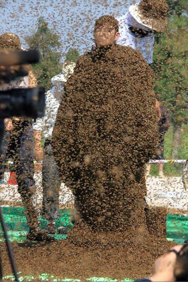 Все тело Жуань Лянмина в пчелах