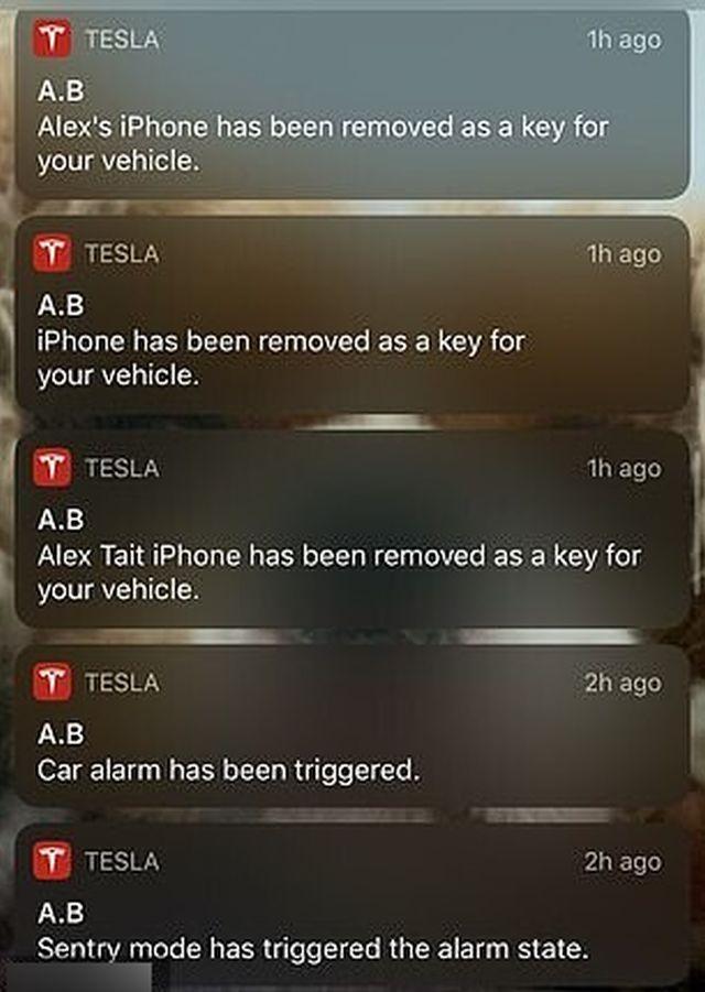 Оповещения Tesla Model 3
