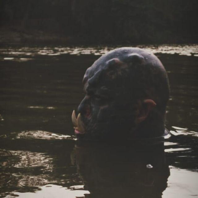 Орк в воде
