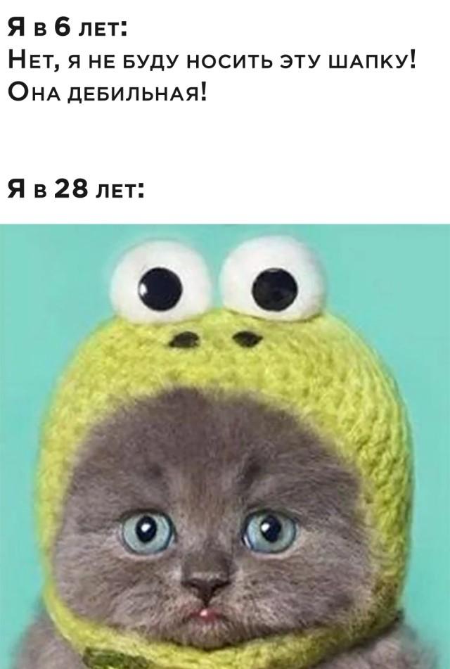 Подборка картинок. Вечерний выпуск (30 фото) - 17.11.2020