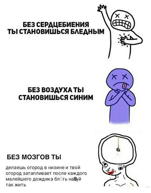 Мемы, которые поймут лишь взрослые и опытные люди (15 фото)