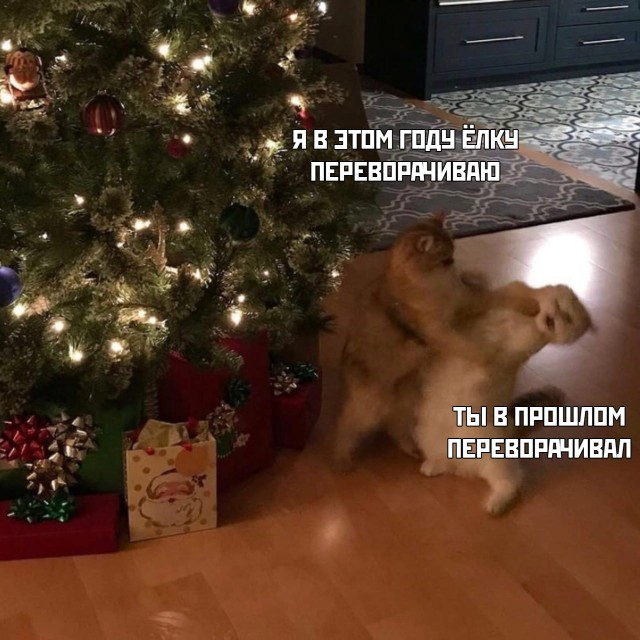 Смешные картинки 29 декабря 2020