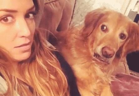 Собака и хозяйка