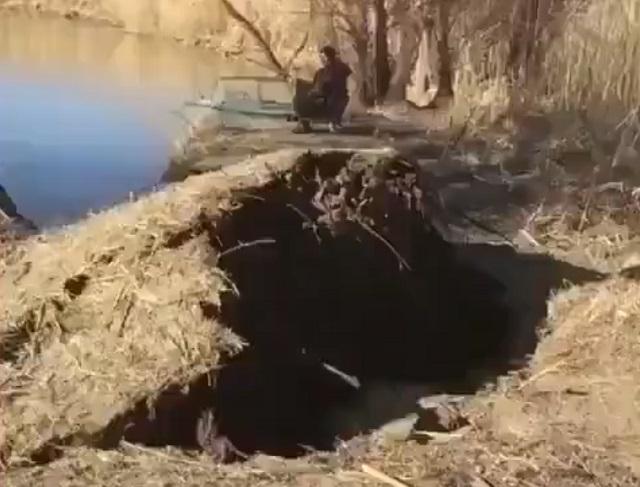 дерево падает