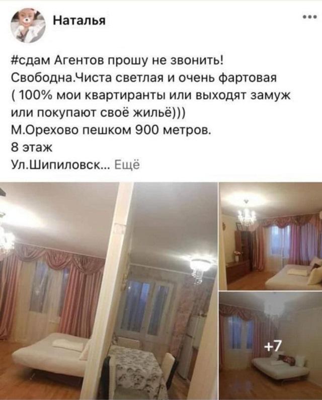 объявление об аренде квартиры