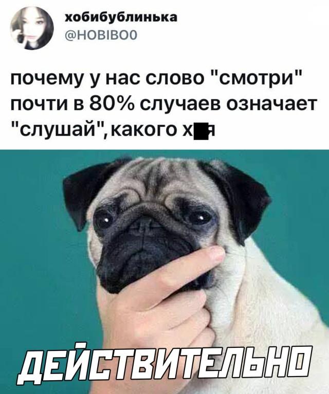 1619712607_podb_22.jpg