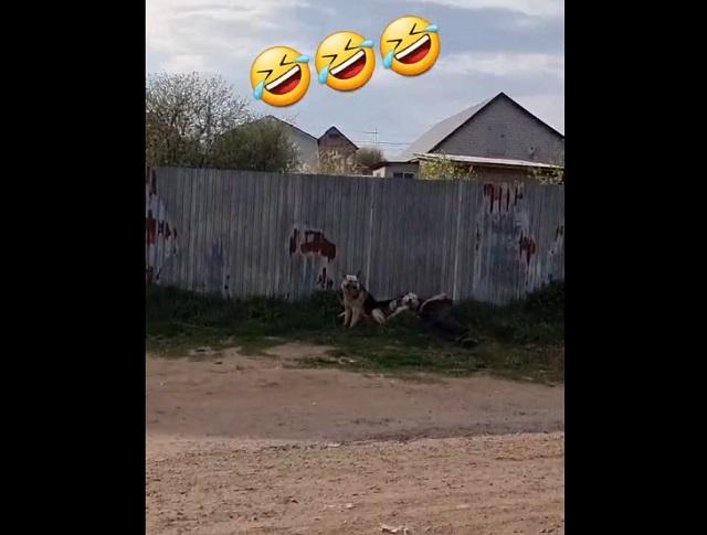 мужчина спит под забором