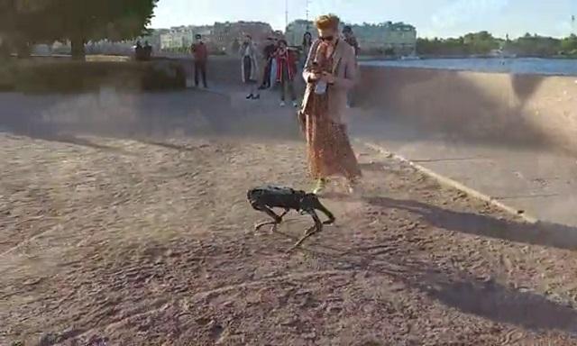 робо-пес