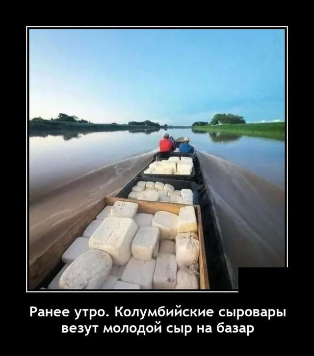 1624538994_demotivatory_05.jpg