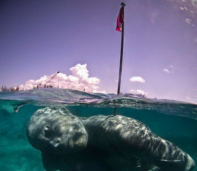 Атмосферные и немного пугающие фотографии подводных объектов