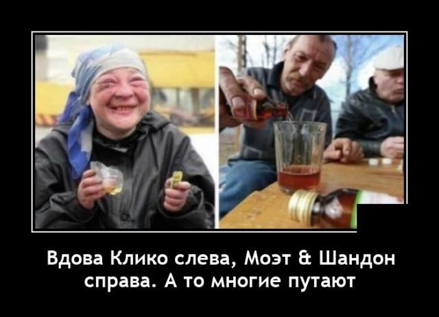 1625757297_demotivatory_10.jpg