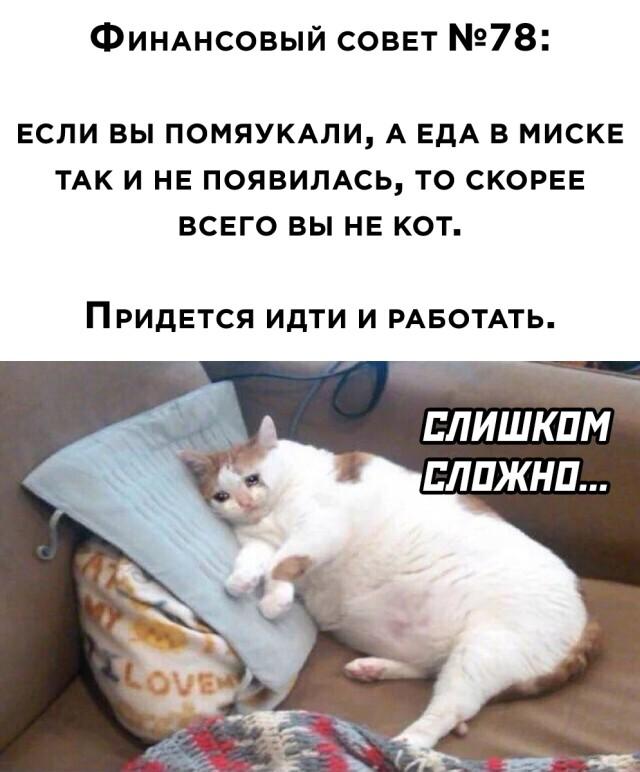 1625759503_podb_17.jpg
