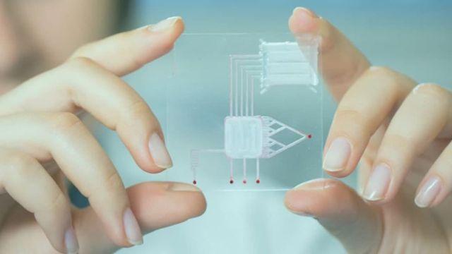 В России приступили к разработке биочипа