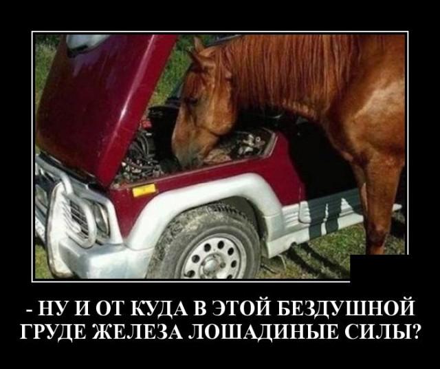 1626954109_demotivatory_06.jpg