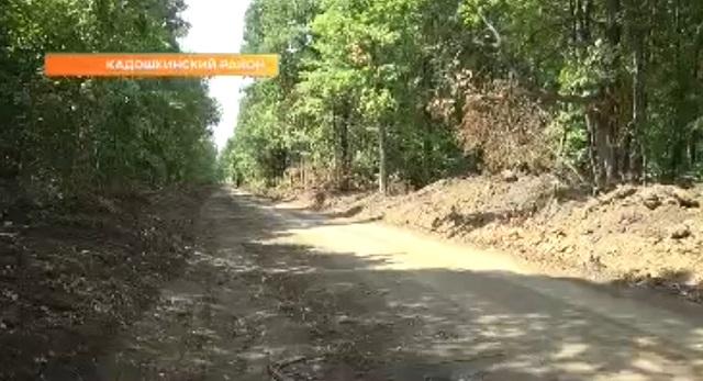 грунтовая дорога в лесу
