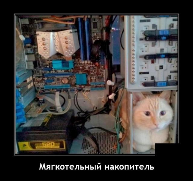 1627570595_demotivatory_16.jpg