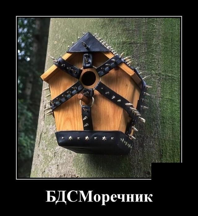 1627570597_demotivatory_06.jpg