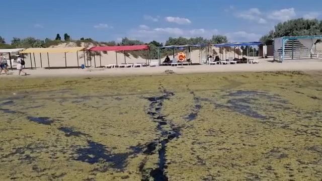 грязное море в анапе