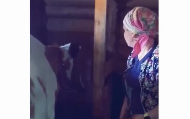 Когда решила обсудить с коровой проблемы быков