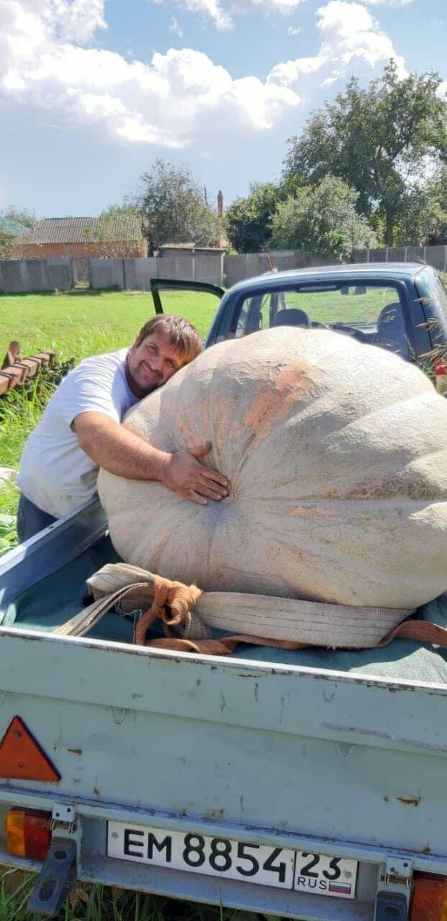 Фермер из России вырастил тыкву весом 544 килограмм