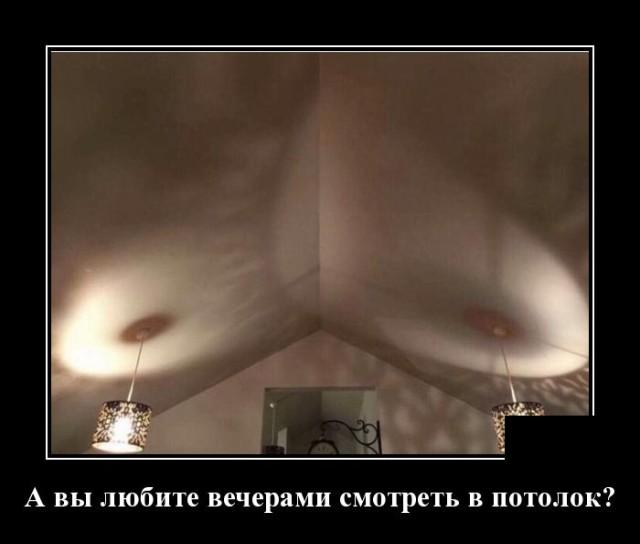 1631189445_demotivatory_01.jpg