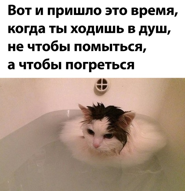 1631197873_podb_01.jpg
