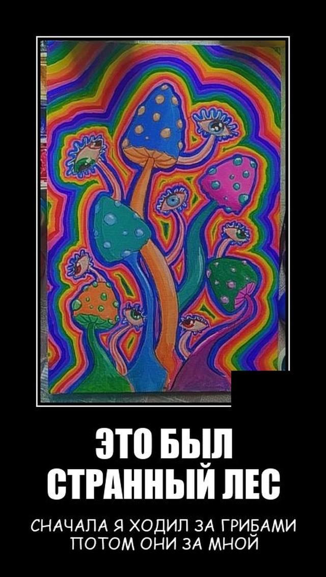 1631798106_demotivatory_16.jpg